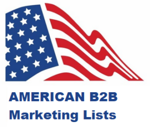 american B2B marketing